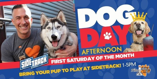 Dog Day Saturday Afternoon